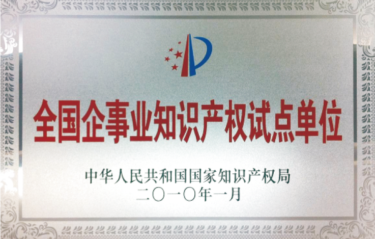 National Pilot Unit for Intellectual Property Rights of Enterprises and Institutions